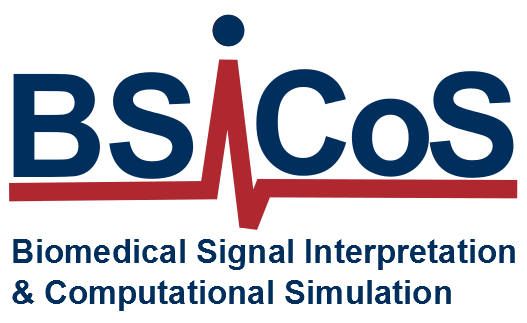 Biomedical Signal Interpretation and Computational Simulation Group (BSICoS Group)
