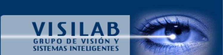 Grupo de Visión y Sistemas Inteligentes
